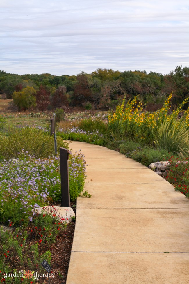 Savanna Meadow Trail