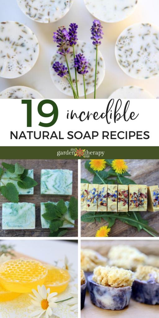 19 Incredible Natural Soap Recipes