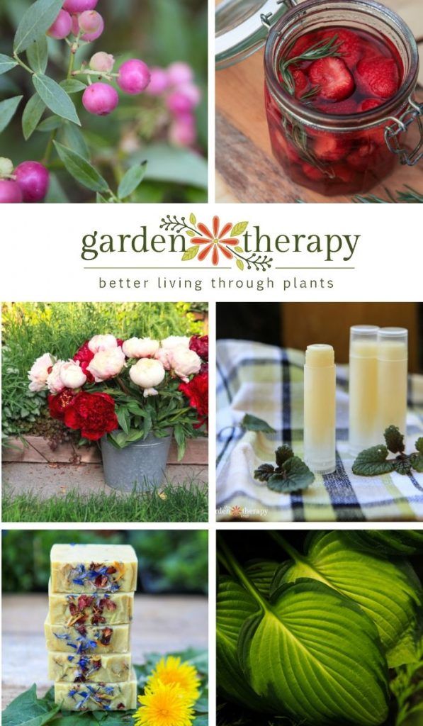 A Year in Review: The Best of Garden Therapy 2019