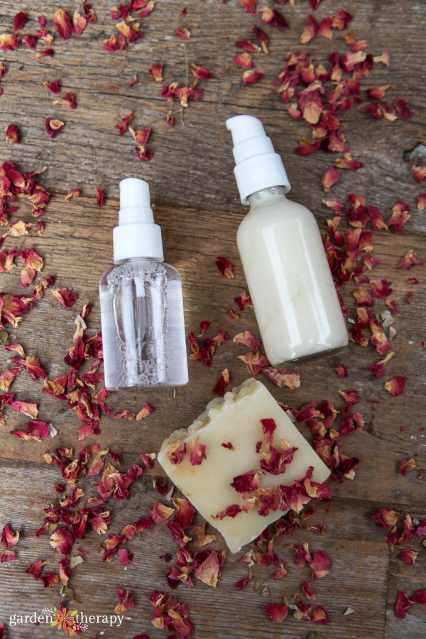Trio of diy skincare products made with rose lying in dried rose petals
