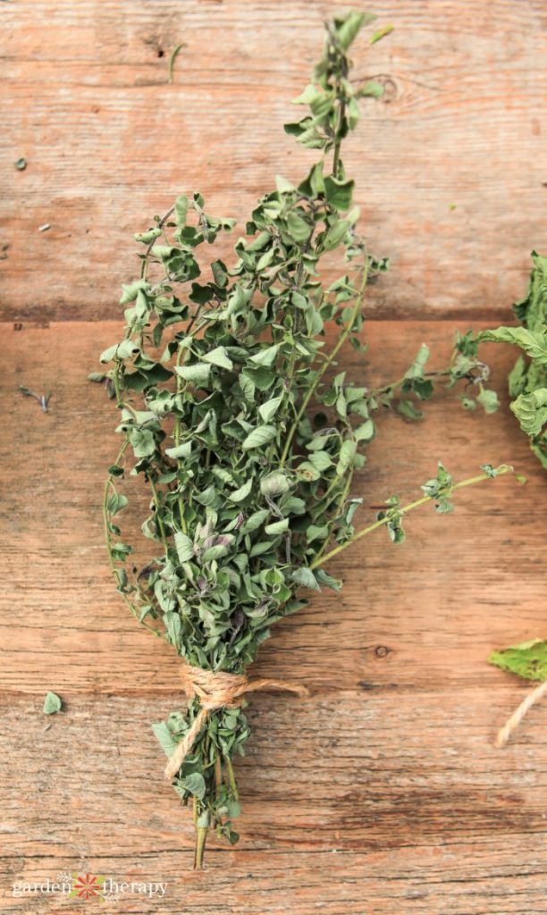 Bunch of dried oregano on a wooden table