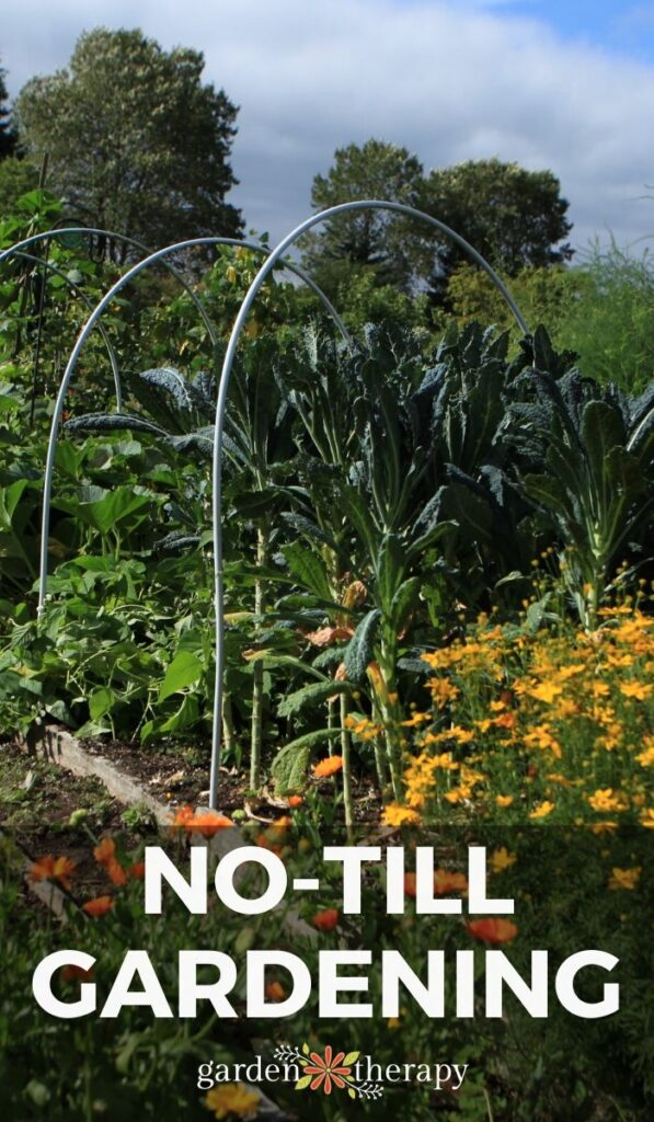 pinterest graphic for no till gardening