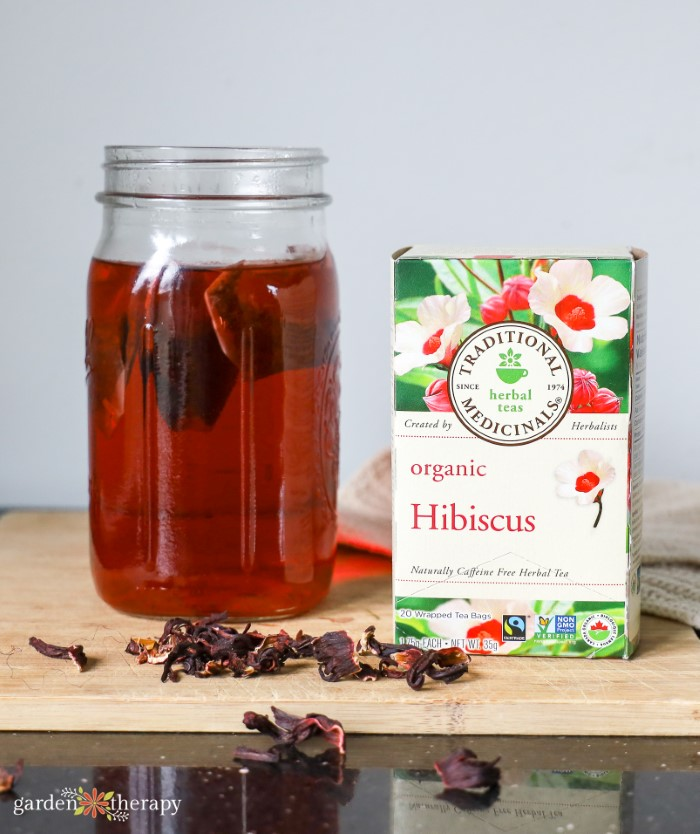 Hibiscus Iced Tea Traditional Medicinals