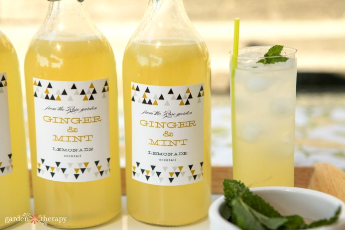 bottles of ginger mint lemonade next to a glass of the lemonade and ice