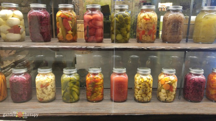 Rows of glass jars filled with homemade pickles