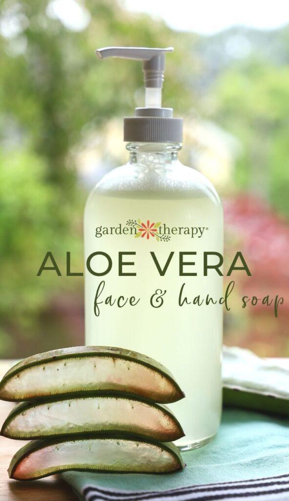Aloe vera soap next to a stack of freshly sliced aloe vera