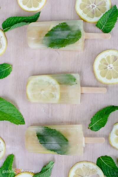 Lemon and mint mojito popsicles