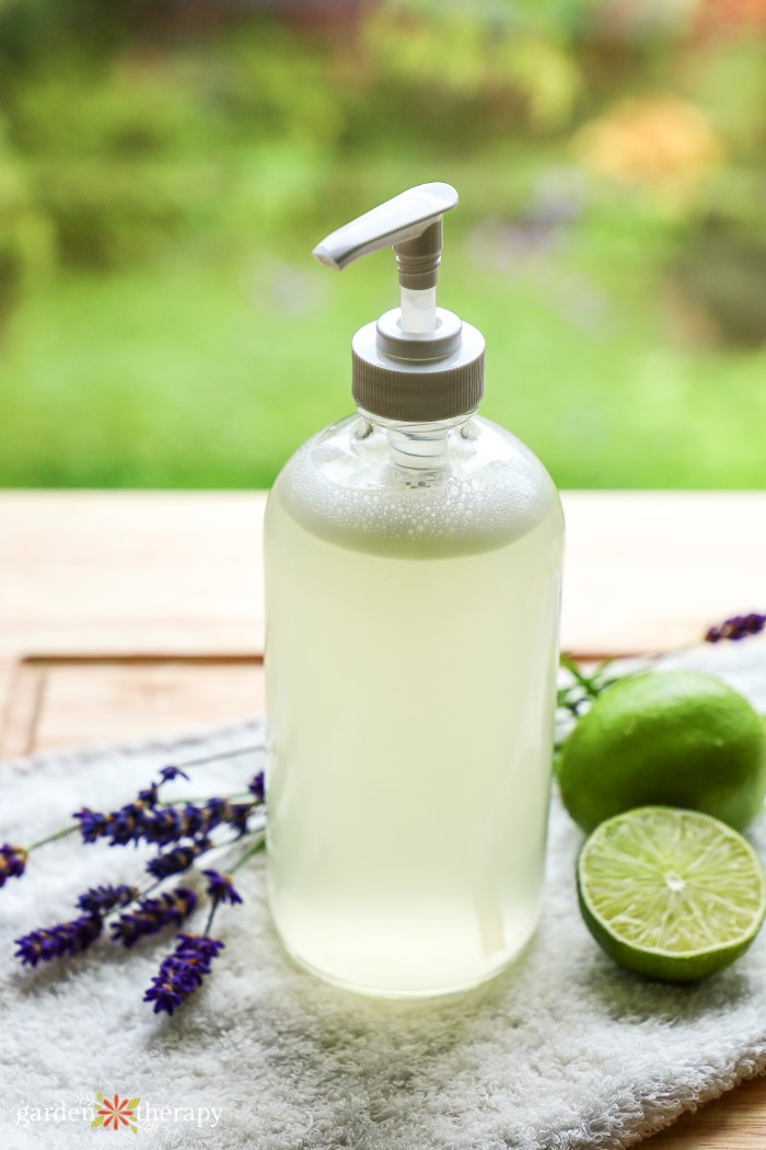 Aloe vera soap in a pump bottle next to lavender and lime