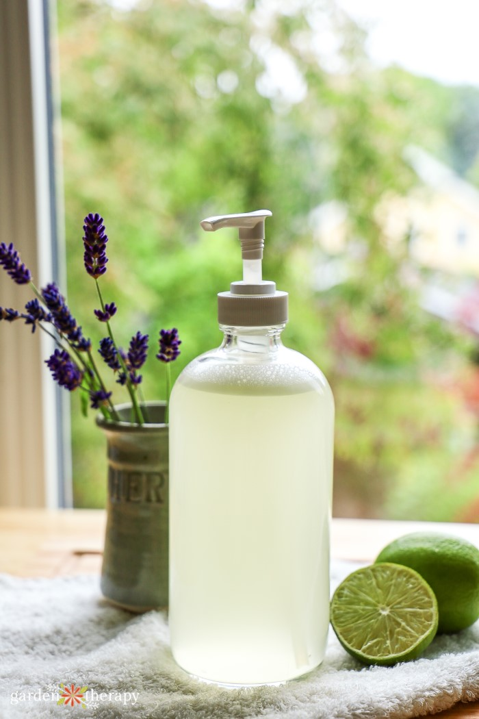 Glass bottle of aloe vera soap with a container of lavender and lime