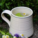 Feverfew tea with dried lavender for headaches