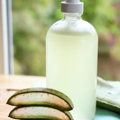 DIY Aloe Vera Soap: a Plant-Based Skin-Soothing Soap for Face and Hands