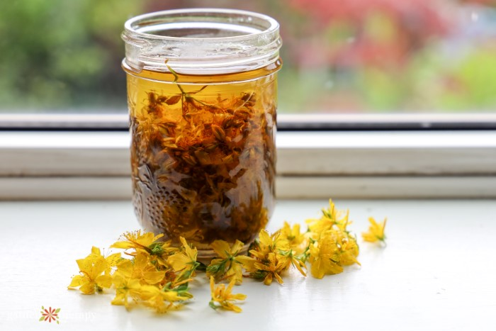 Glass jar of oil infused with small yellow flowers on a window sill