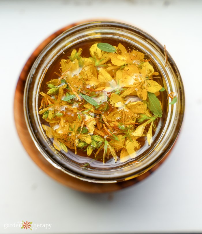 Top view of st. john's wort oil