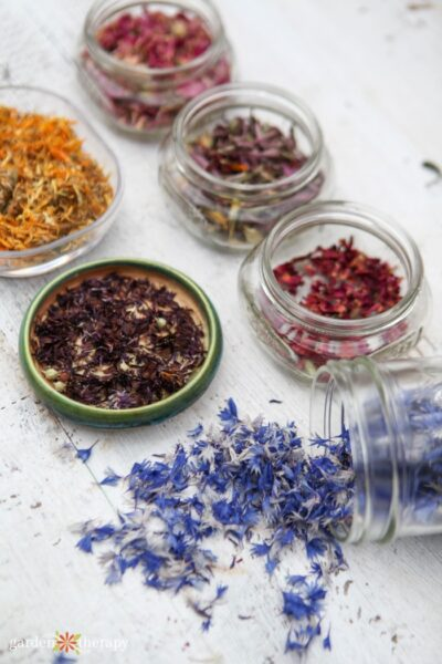 Colorful dried flower petals in glass jars