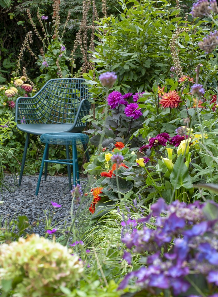 Garden with a teal chair and blooming flowers