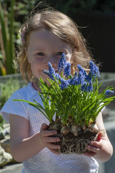 girl holding hyacinth flowers