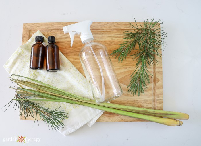 cutting board with pine needle clippings and empty jars