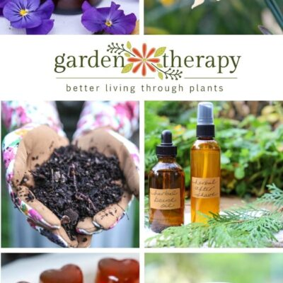 A 2020 Year in Review: The Best of Garden Therapy
