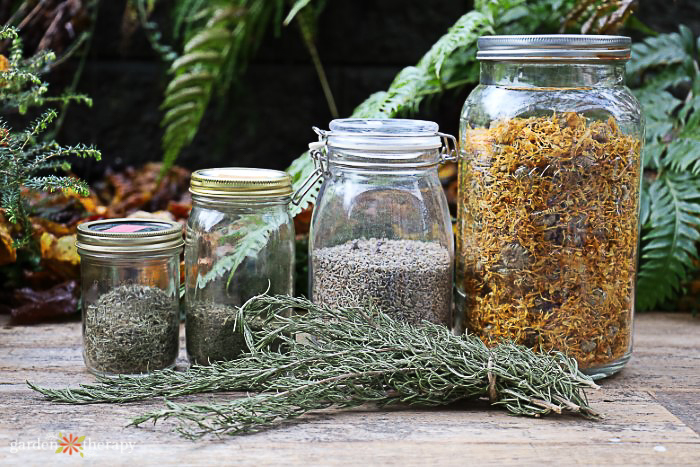Mason jars filled with dried herbs to make an herbal hair rinse.