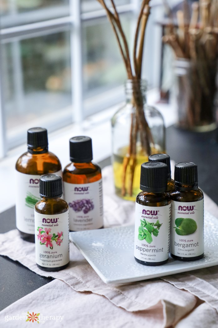 Essential oils used as reed diffuser oils