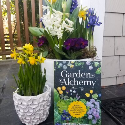 Garden Alchemy Turns One! 12 Weeks of Gardening Giveaways