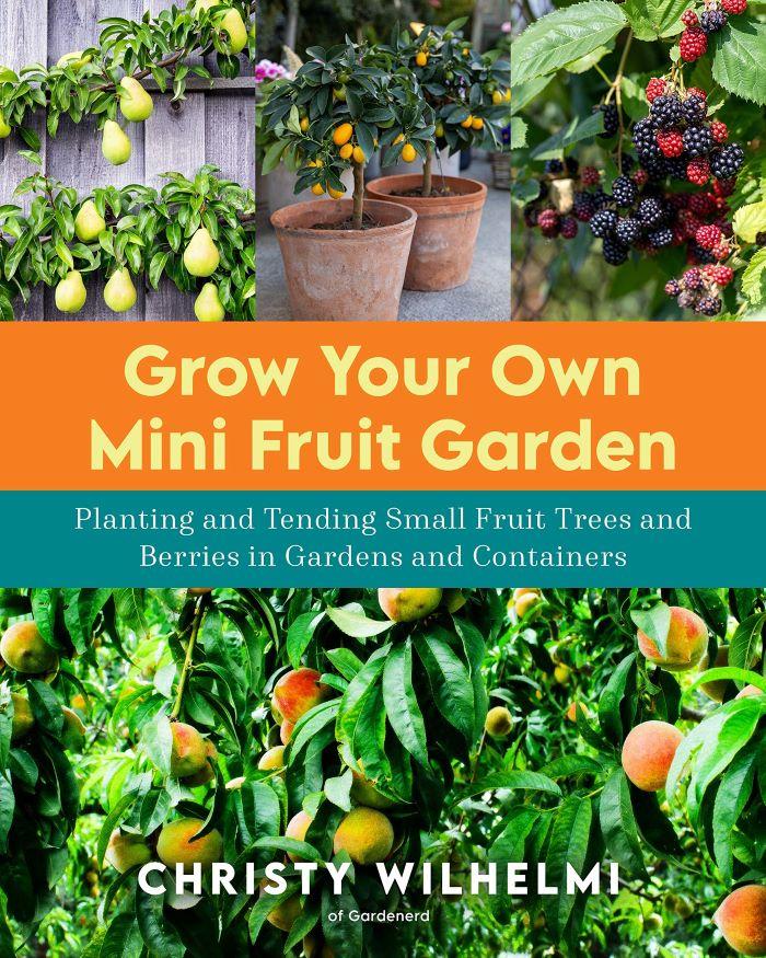 Grow Your Own Mini Fruit Garden book cover