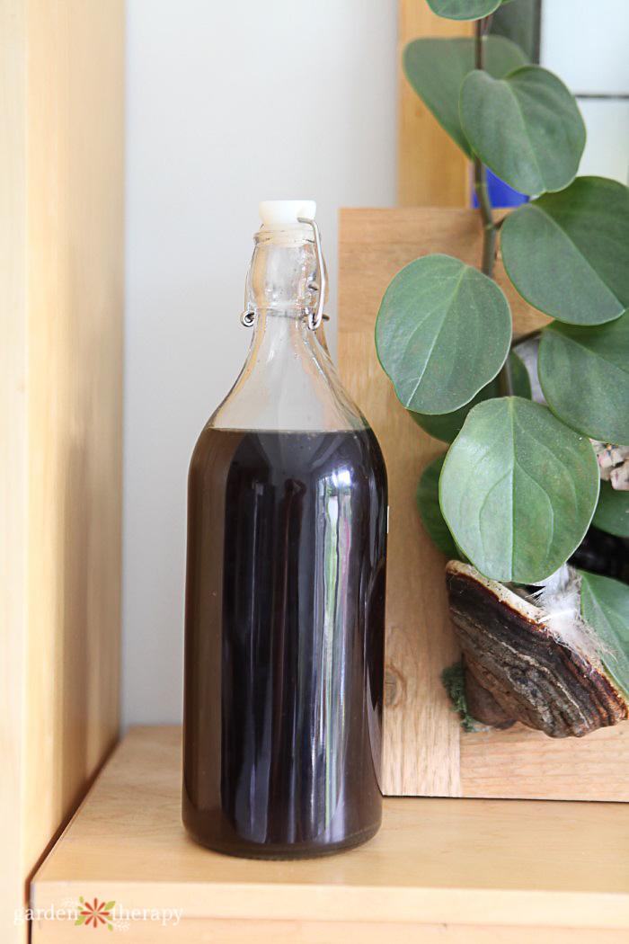 bottle of homemade organic fertilizer for houseplants