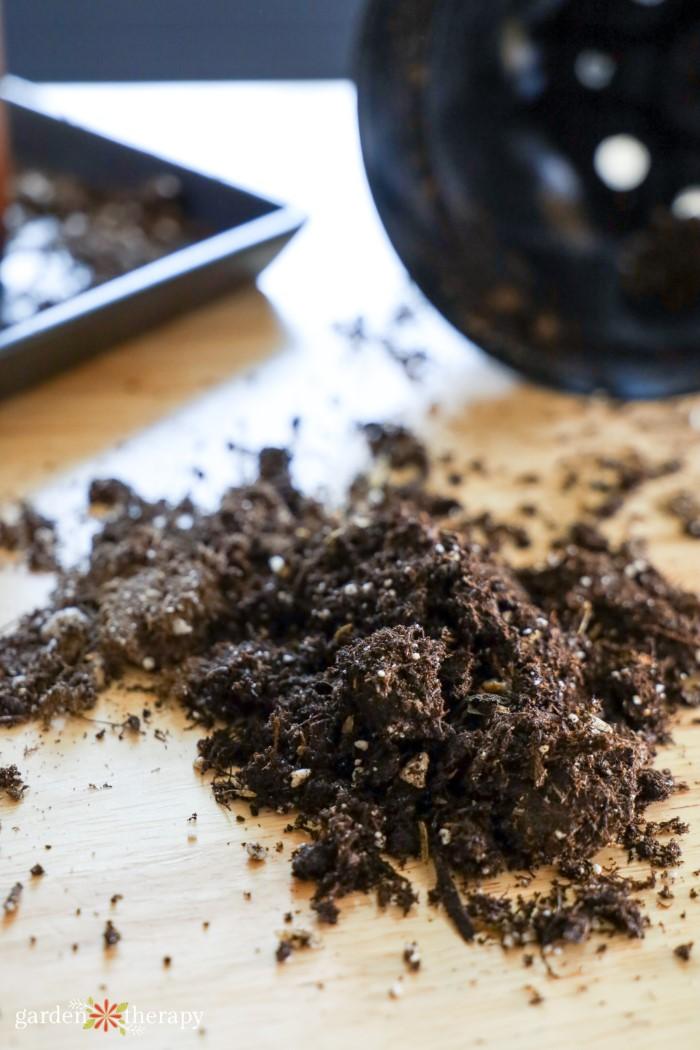 houseplant soil recipe