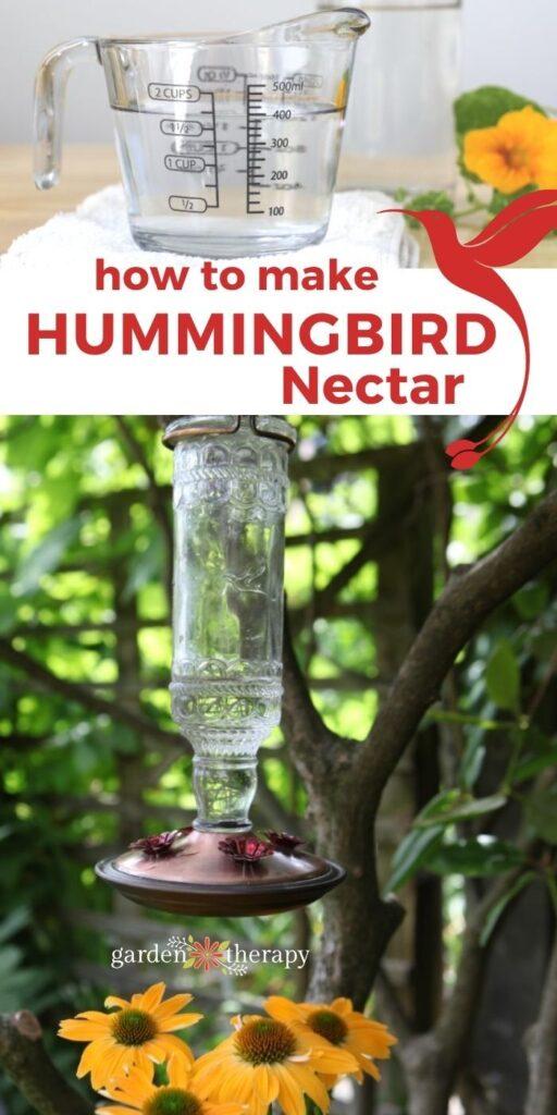 Kolibri étel recept