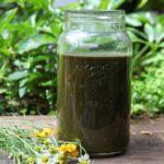 how to use alfalfa