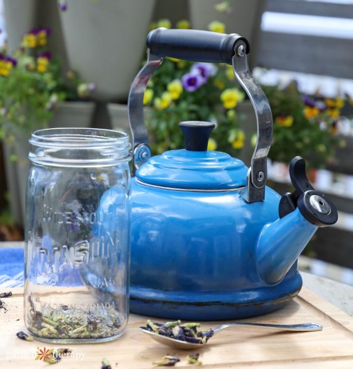 making butterfly pea flower tea