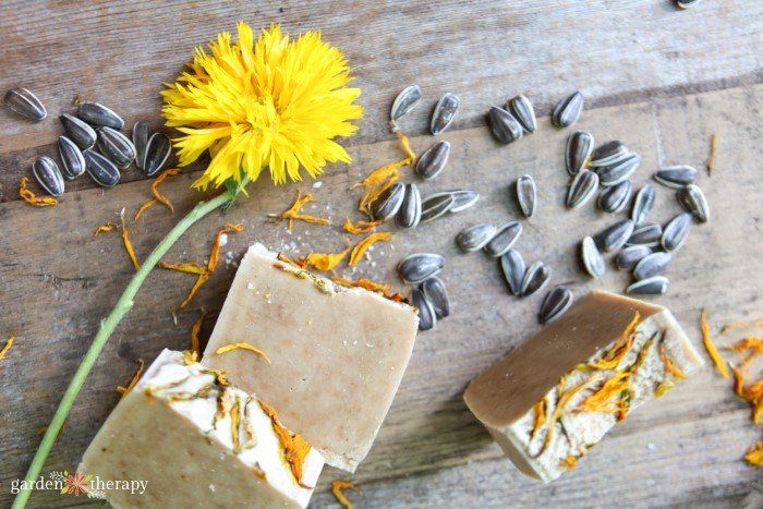 sunflower soap with turmeric and calendula