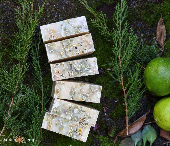 cedarwood soap recipe