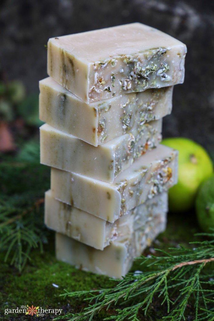 cedar and lime soap recipe